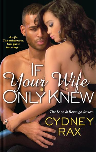 Love and Revenge Novel Book 1
